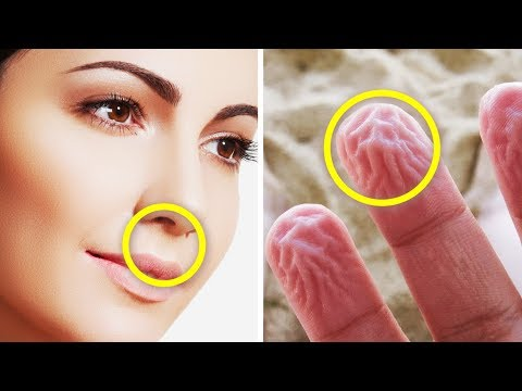 25 Amazing facts that will shock you